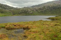 An Upland Marsh and Loch